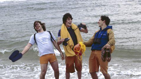 Beach Boys - Rette sich wer kann