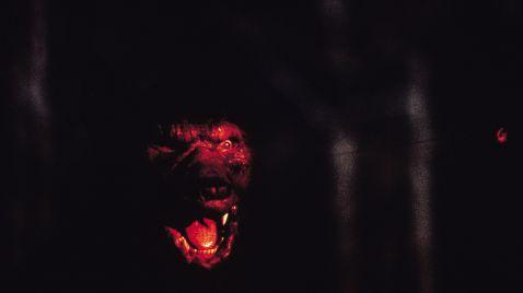 Stephen Kings Werwolf von Tarker Mills