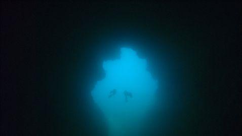 Im Reich der Tiefe
