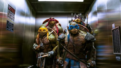 Teenage Mutant Ninja Turtles |