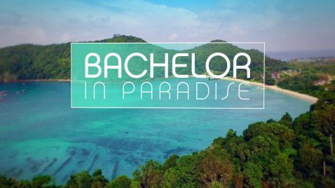 Bachelor in Paradise |