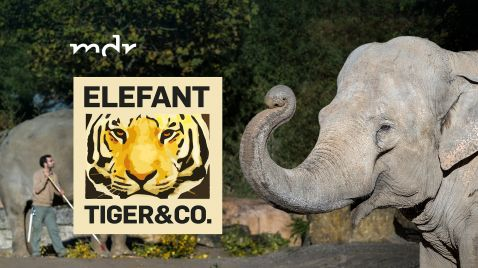 Elefant, Tiger & Co. - Spezial |